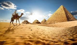 «Черная плесень» уже в Египте. Чем опасна новая болезнь для туристов и попадет ли она в Украину