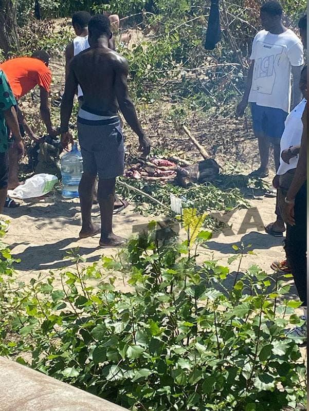 Нигерийцы готовят коз в Днепре