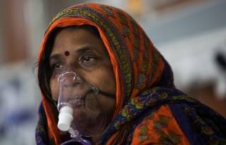 «Зеленая плесень»: в Индии зафиксировали новую заразу