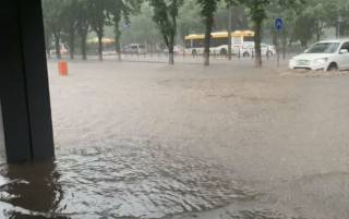 Потоп и поваленные деревья. На Мариуполь обрушилась стихия