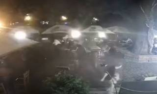 На Закарпатье огромная ветка едва не покалечила посетителей кафе