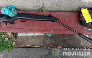 На Житомирщине подросток выстрелил в товарища из пневмата