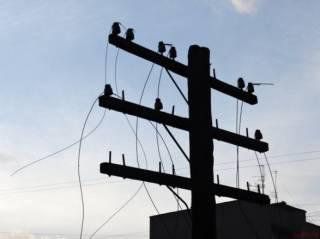 Стало известно, где из-за непогоды украинцы остались без электричества