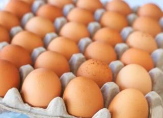Украинцам решили больно «ударить» по яйцам
