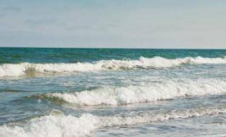 Отдыхающим посоветовали не купаться в Затоке