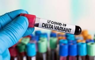 На Закарпатье подтвердили дельта-коронавирус у женщин, вернувшихся из России