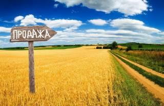 Стало известно, где продали больше всего украинской земли