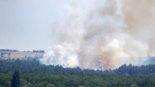 Неизвестные подожгли леса на Хортице