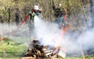 В Киеве и облaсти объявлен чрезвычайный уровень пожарной опасности