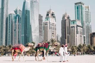 Власти ОАЭ придумали оригинальный способ борьбы с засухой и жарой