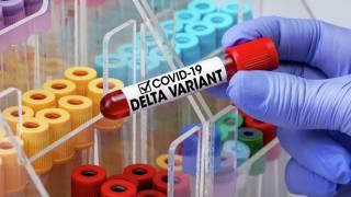 Ученые рассказали неприятные подробности о дельта-коронавирусе