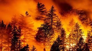Синоптики рассказали, как лесные пожары в Европе влияют на погоду в Украине