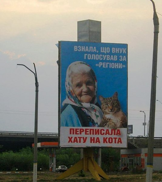 Баба и кот