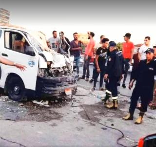В Египте кобра на ходу убила водителя микроавтобуса и всех его пассажиров