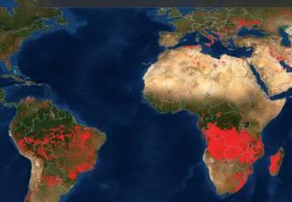 Ад на Земле: NASA опубликовало спутниковую карту пожаров