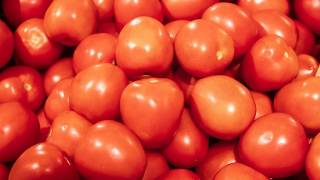 В Узбекистане начали выращивать помидоры с вакциной от коронавируса