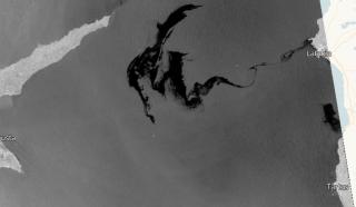 В Средиземном море повторяется экологическая катастрофа, которая ранее постигла Черное