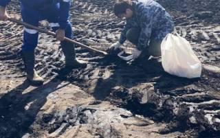 В Сумской области произошел разлив нефти