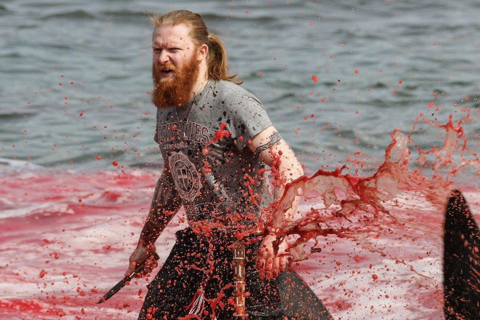 Массовая резня дельфинов на пляже на Фарерских островах