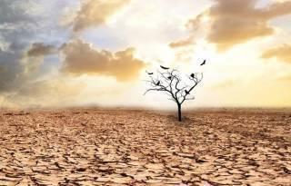 Генсек ООН сделал устрашающее заявление об изменении климата на планете