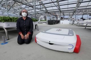 Американцы нашли роботам неожиданное применение в сельском хозяйстве