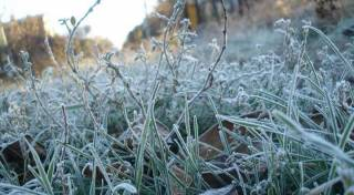 До минус пяти: украинцев предупредили о нешуточных заморозках