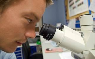 Ученые создали первое «живое лекарство» против опасных инфекций