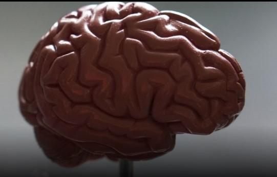 Сколько мыслей возникает в голове за сутки?